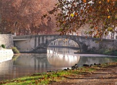 Wallpapers Nature Canal du midi