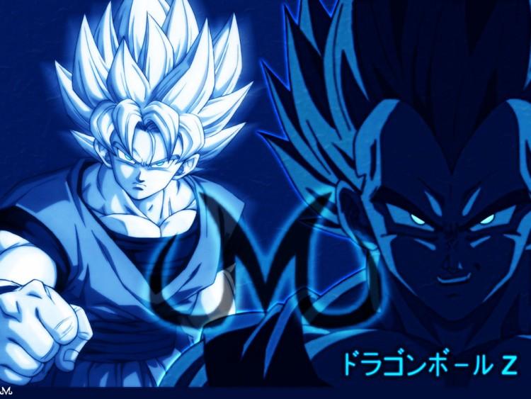 Fonds d'écran Manga Dragon Ball Z Majin