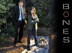 Fonds d'écran Séries TV Bones : Booth & Brennan