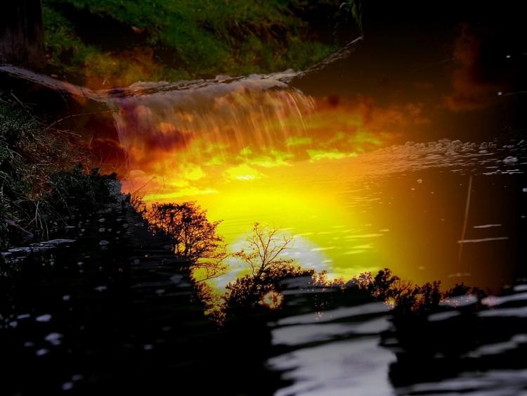 Fonds d'écran Nature Divers - Compositions Composition personnelle