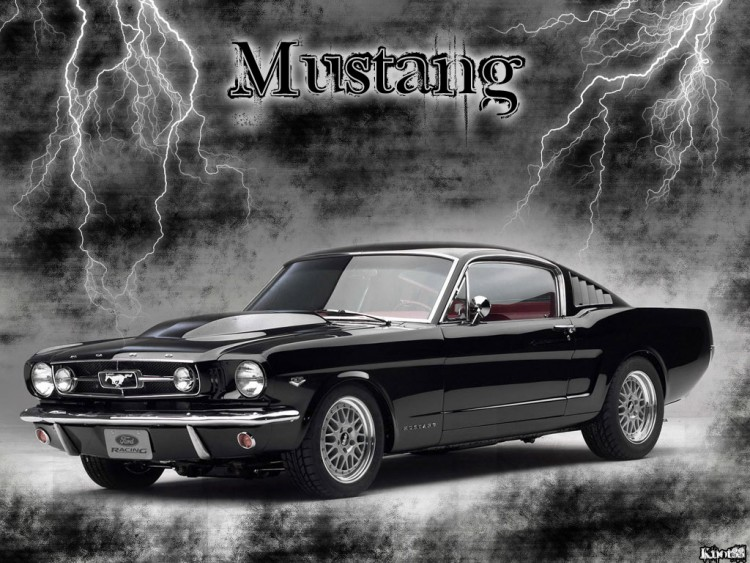 Wallpapers Cars Mustang Wallpaper N°165147