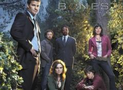 Fonds d'écran Séries TV Bones cast s2