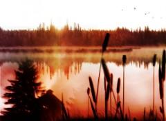 Fonds d'écran Nature Misty Morning