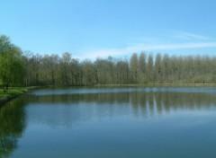Fonds d'écran Nature L'étang aux Moines
