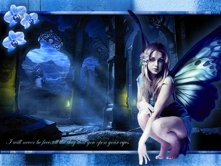 Wallpapers Fantasy and Science Fiction Fairies i will never be free...