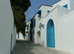 Wallpapers Trips : Africa SIDI BOU SAID