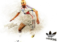 Wallpapers Sports - Leisures zizou