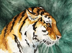 Wallpapers Art - Painting Tigre