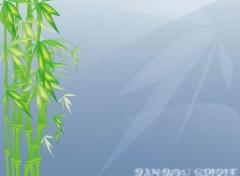 Fonds d'écran Art - Numérique Bamboo spirit