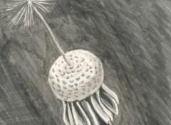 Wallpapers Art - Pencil pissenlit