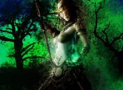 Fonds d'écran Fantasy et Science Fiction La guerrière au crâne
