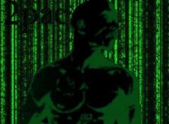 Fonds d'écran Célébrités Homme 2pas in the matrix