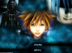 Wallpapers Video Games Kingdom Hearts II