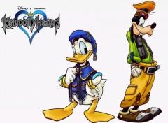 Wallpapers Video Games Donald et Dingo