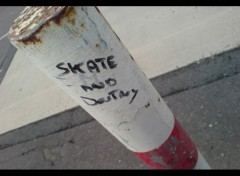 Wallpapers Sports - Leisures Skate & Destroy