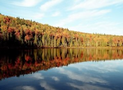 Wallpapers Trips : North America Reflets d'automne