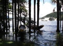 Fonds d'écran Nature Lagune de Canaima