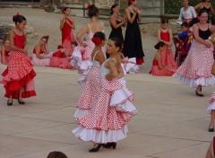 Fonds d'écran Sports - Loisirs flamenco