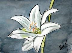 Fonds d'écran Art - Peinture Lys