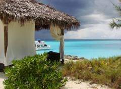 Fonds d'écran Nature Bahamas 2