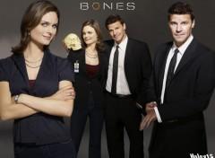 Fonds d'écran Séries TV Bones Brennan & Booth