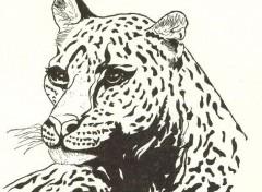 Wallpapers Art - Pencil JAGUAR