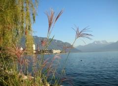 Fonds d'écran Voyages : Europe Le lac Léman vu de Montreux