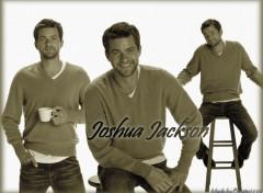 Fonds d'écran Célébrités Homme Joshua Jackson