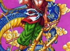 Wallpapers Art - Pencil Sangoku sur un dragon bleu