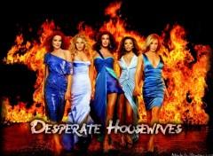 Fonds d'écran Séries TV Desperate Housewives