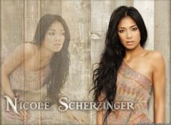 Fonds d'écran Musique Nicole Scherzinger