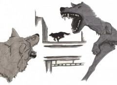 Wallpapers Art - Pencil Wolf's rain