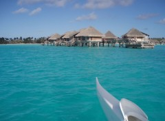 Wallpapers Nature Hotel sur Bora