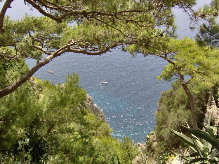 Fonds d'écran Nature Falaises Au bord de la falaise à Capri