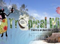 Fonds d'écran Art - Numérique Vin tropical