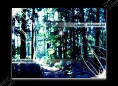 Fonds d'écran Art - Numérique Elvish Paradise