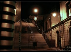 Wallpapers Constructions and architecture Escalier à Saint-Cloud de nuit