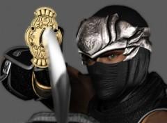 Fonds d'écran Jeux Vidéo ninja_gaiden_rigell_006
