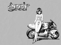 Fonds d'écran Manga apple seed