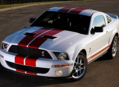 Wallpapers Cars Cobra GT500