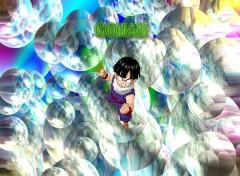 Fonds d'écran Manga Gohan