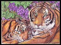 Fonds d'écran Art - Peinture Bengale