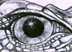 Wallpapers Art - Pencil Oeil de Dragon