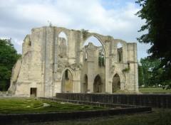 Fonds d'écran Constructions et architecture Ruines de l'Abbaye du Lys à Dammarie-Les-Lys (77)