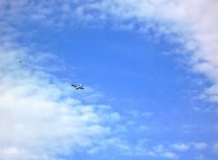 Fonds d'écran Avions Image sans titre N°201349