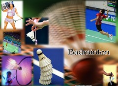 Wallpapers Sports - Leisures Badminton