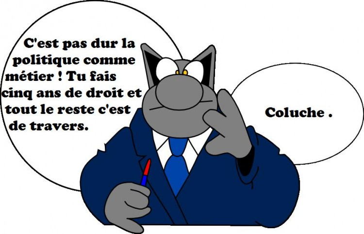 Fonds d'écran Humour Divers Le chat
