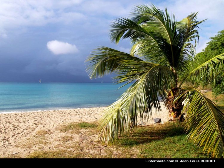 Fonds d'écran Voyages : Europe Guadeloupe Guadeloupe