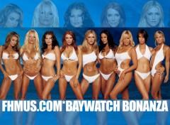 Fonds d'écran Séries TV Alerte a Malibu
