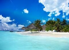 Fonds d'écran Voyages : Océanie Plage de sable fin